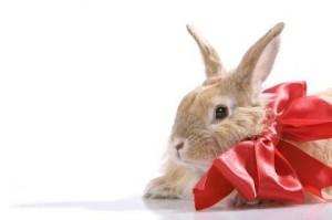 programajánló - húsvét